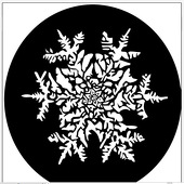 "Snowflake 1"" Gobo for Eddy Light Gobo Projector"
