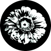"Detailed Daisy 1"" Gobo for Eddy Light Gobo Projector"