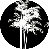 "Trees 1 - 1"" Gobo for Eddy Light Gobo Projector"