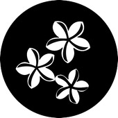 "Pinwheel Daisies 1"" Gobo for Eddy Light Gobo Projector"