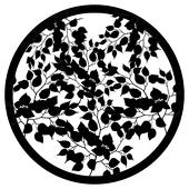 Tangled Leaves 1