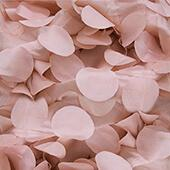 Large Petal Gatsby Circle - 10 Yard Fabric Roll - Blush/Rose Gold