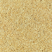 Gold Bullion Saxony Event Carpet - 4 Feet Wide - Select Your Length!
