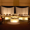 DELUXE 2 Panel Wedding Backdrop - 6-14ft High