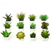 "Decostar™ Succulents 1¾"" 12pc/set  - 12 Sets (72 Pieces) - Green"