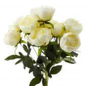 Decostar™ Artificial Flower Bouquet - Cream Peony - 12 Pieces