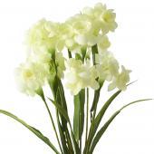 Artificial Flower w/ Greenery Stem - 24 Pieces - Ivory