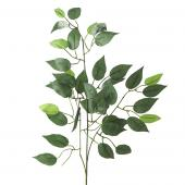 "Artificial Ficus Leaf Stem - 21""x 34"" - 10 Pieces"