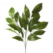 "Artificial Ficus Leaf Stem - 24""x 29"" - 10 Pieces"