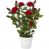 DECOSTAR™ 26in Artificial Rose Plant with Pot - White