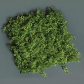 Leafy Greenery Grass Mat - 19