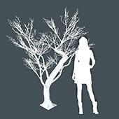 8ft Tall Grand Manzanita Tree - 24 Interchangeable Branches - White