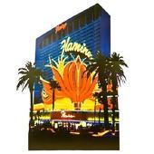 Flamingo Casino Kit