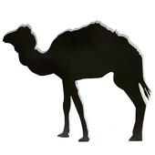 Desert Camel Silhouette