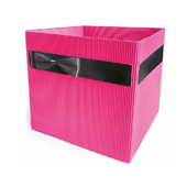 OASIS Clayrton's Simply Container - Fuschia - 10/Pack