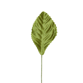 "OASIS Corsage Leaf - 2 1/4"" - Moss Green"