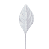 "OASIS Corsage Leaf - 2 1/4"" - White"