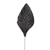 """OASIS Corsage Leaf - 3"""" - Black"""