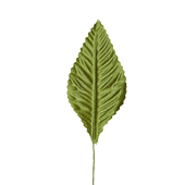 "OASIS Corsage Leaf - 3"" - Moss Green"