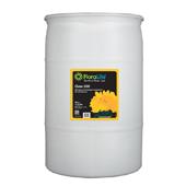Floralife® Clear 200 Storage & transport treatment - 30 gallon