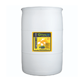 OASIS Floralife® Express Clear 200 - 55 gallon