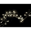 Warm White LED Light Strand-Battery Operated