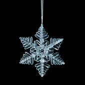 DecoStar™ Snowflake #2 Ornament (Case of 6)