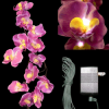 Lighted LED Branch - Purple Orchids - w/ Wall Plug
