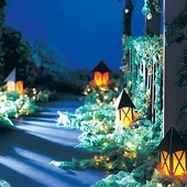Bright Life Lanterns Kit (set of 6)