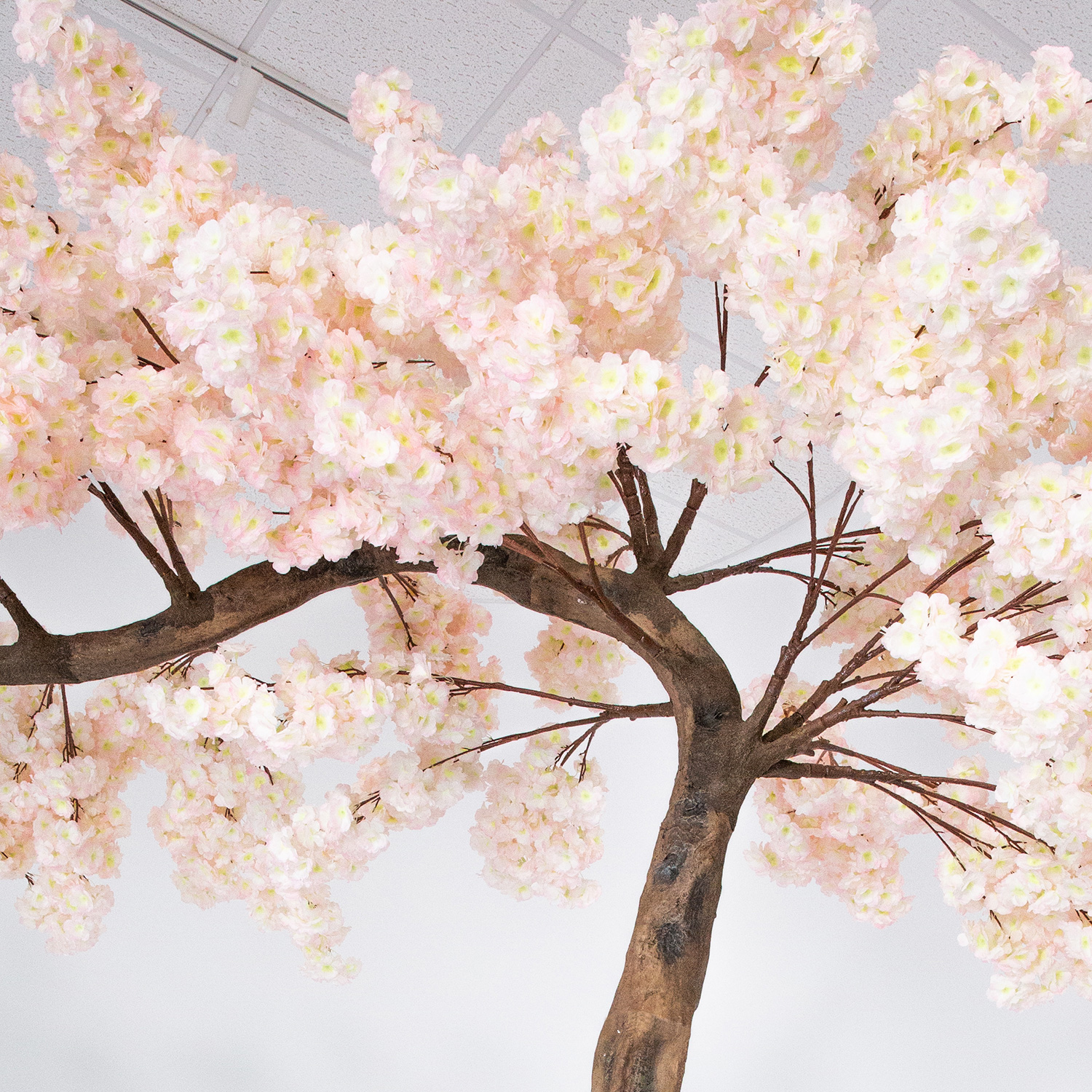 Cherry Blossom Tree Black And White: 11-Foot Artificial White Cherry Blossom Tree