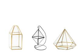 Geometrics & Terrariums