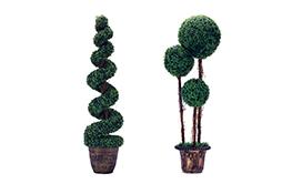 Greenery Plants & Balls