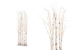 LED Trees