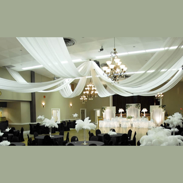 8 panel sheer voile 21ft ceiling draping kit 44 feet wide for Decor direct