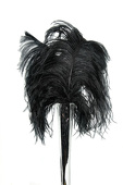 DecoStar™ Package of 10 Premium Black Ostrich Feather Plumes (16 - 18 inches)