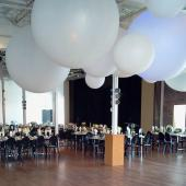 Giant 8ft Latex Balloon - No Helium Required - CHANGE COLOR W/ UPLIGHTING!