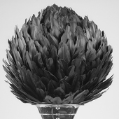 "DecoStar™ Premium 16"" Feather Ball - Black"