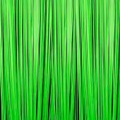 Neon Green - Fringe Curtain - Many Size Options