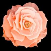 "12"" DecoStar™ Deluxe Fresh Rose Foam Flower -  Peach/Light Pink"