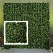 8ft x 7ft Portable Boxwood Greenery Backdrop Kit