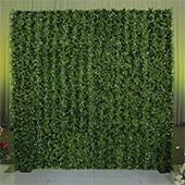 8ft x 8ft Portable Mixed Natural Greenery Backdrop Kit