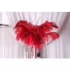 Package of 10 Premium Red Ostrich Feather Plumes in Choice of Sizes