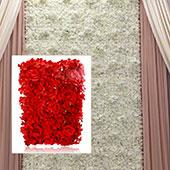 8ft x 8ft Portable Mixed Red Floral Backdrop Kit