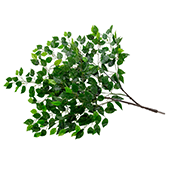 Single Fig Leaf Branch - Interchangeable Branches for Large Event Trees!