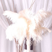 DecoStar™ Package of 10 Premium White Ostrich Feather Plumes (16 - 18 inches)